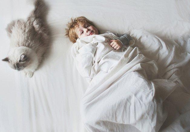 gatos-filhos23