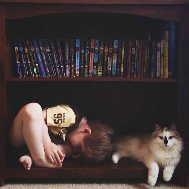 gatos-filhos3