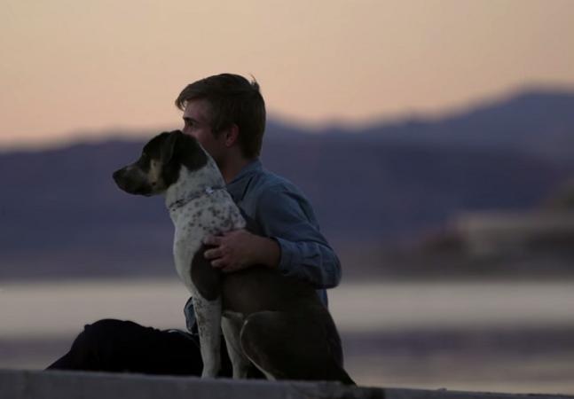 Cães abandonados ajudam ex-detentos a redescobrir o significado do amor