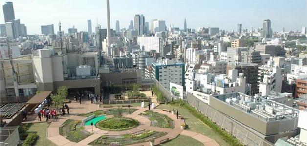 toquio 15