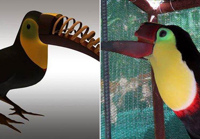Como a impressão 3D está ajudando a salvar a vida de animais silvestres