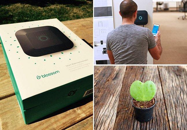 Sistema de irrigação permite controlar a rega das suas plantas através do celular