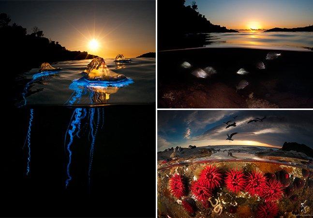Fotógrafo cria série incrível que mostra a vida por cima e por baixo d'água ao mesmo tempo