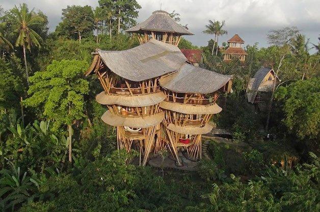 bambu04