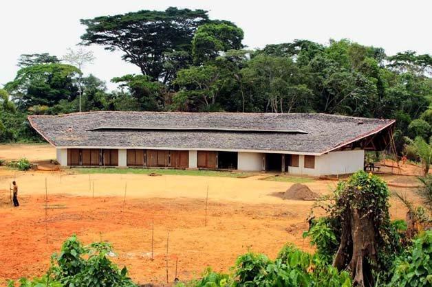 escola-floresta7