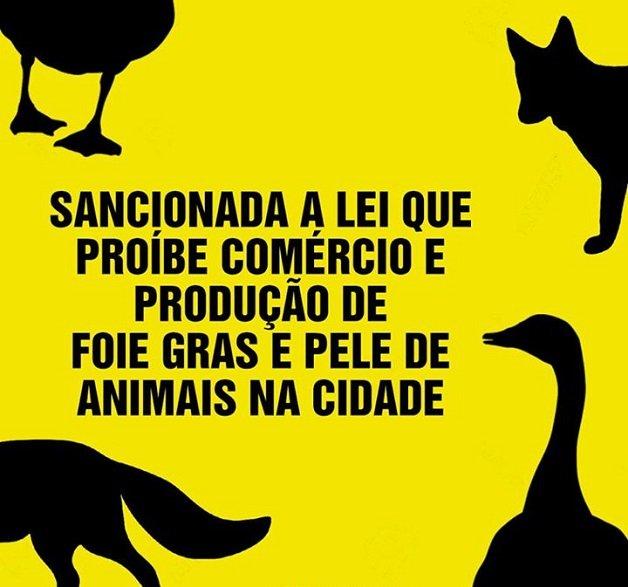 foie1