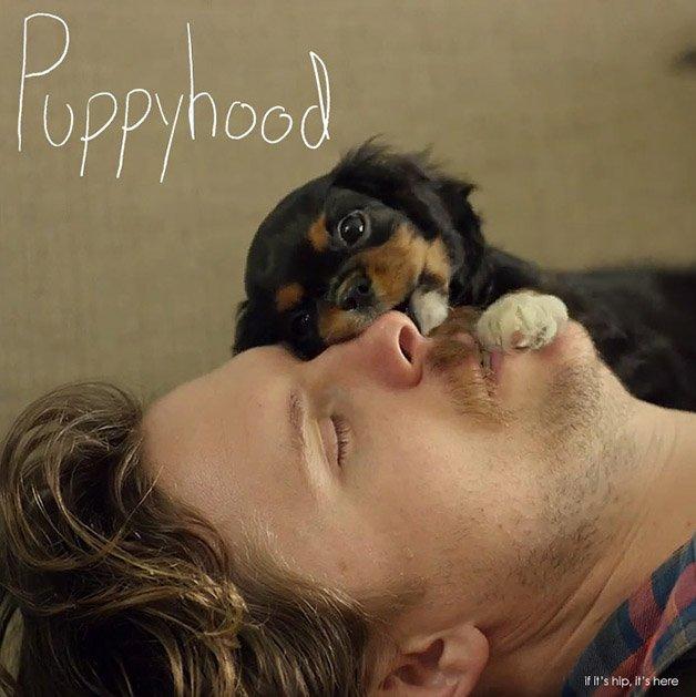 puppyhood3