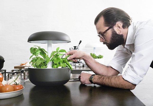 Horta em casa: dispositivo inovador promete vegetais frescos o ano inteiro  sem precisar de terra