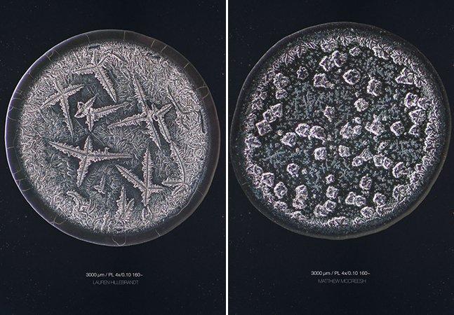 Fotógrafo cria série de micrografias para provar que não existem duas lágrimas iguais