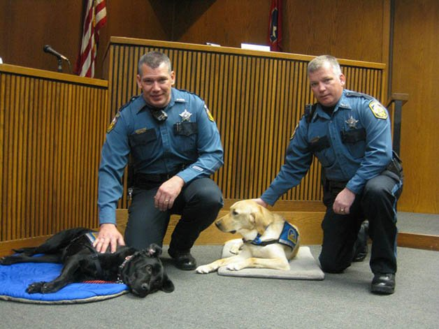 Courthouse-Dogs4