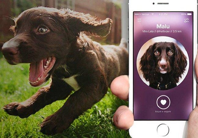 App ajuda a achar aquele cãozinho que você estava procurando para adotar