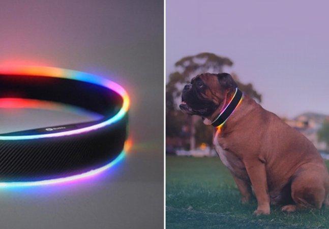 Coleira inovadora promete monitorar em  tempo real a vida do seu cachorro
