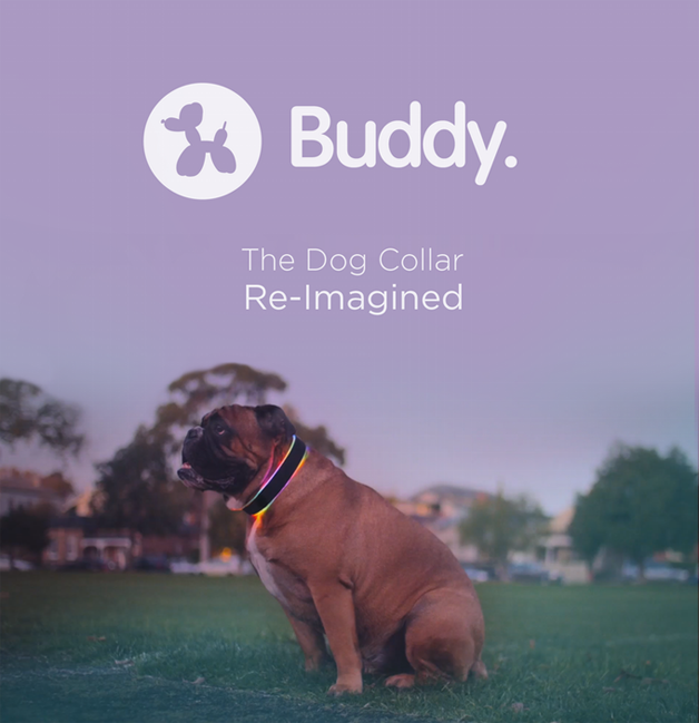 buddy-caes