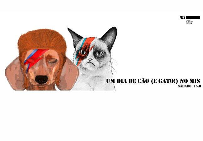 MIS organiza evento pros amantes de cães e gatos nesse fim de semana em SP