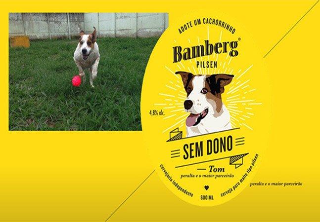 Cerveja Sem Dono traz rótulo com cães para adoção