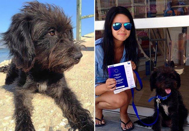 Estudante viaja milhares de quilômetros para adotar cadelinha que a salvou de estupro