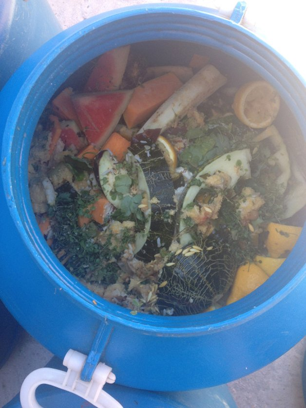 guandu-compostagem8