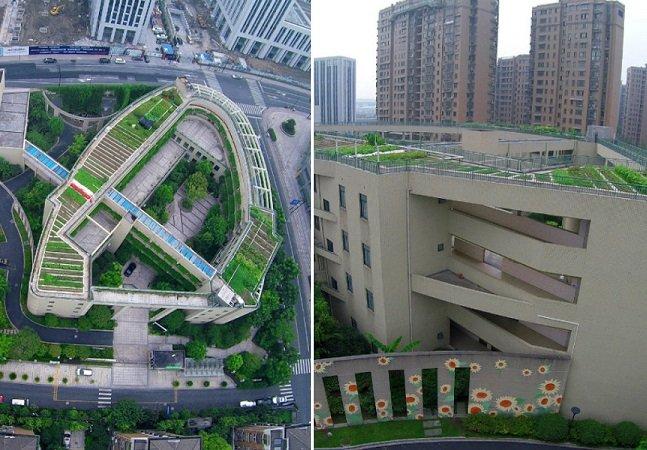Escola chinesa cria horta gigante no telhado