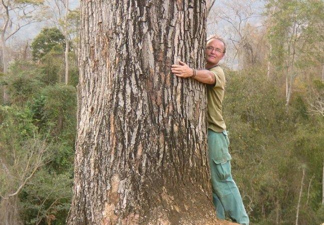 Conheça o homem que já plantou meio milhão de árvores no Espírito Santo