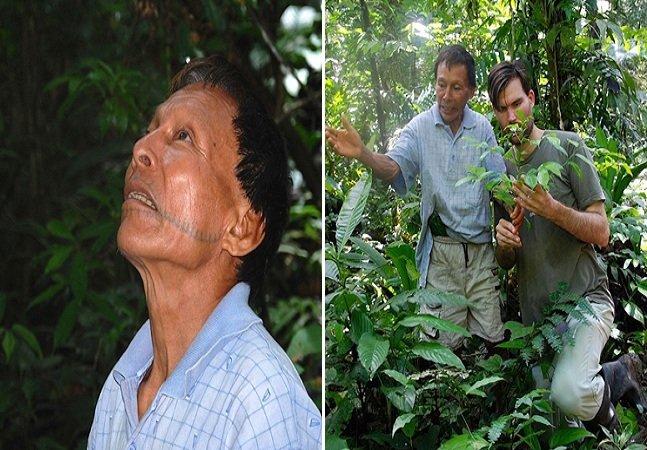 Tribo indígena amazônica cria enciclopédia de 500 páginas catalogando plantas e seus benefícios