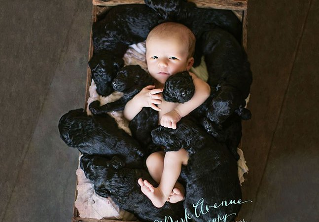 Mulher que teve um bebê no mesmo dia em que sua cadela deu à luz 9 filhotes registra a data com ensaio encantador