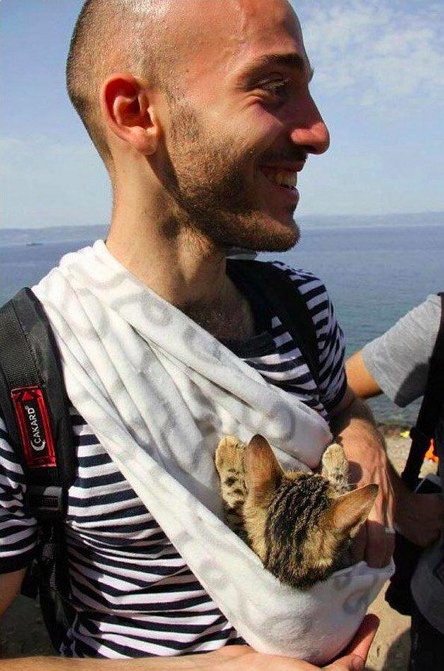 refugiado-gato2