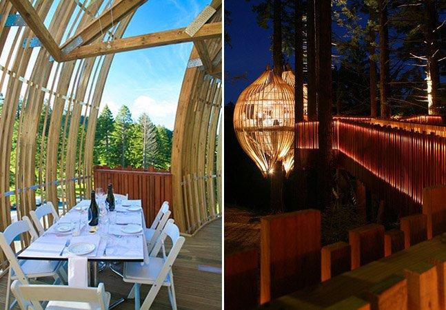 Arquitetos criam restaurante incrível em formato de balão que fica em uma casa na árvore na Nova Zelândia