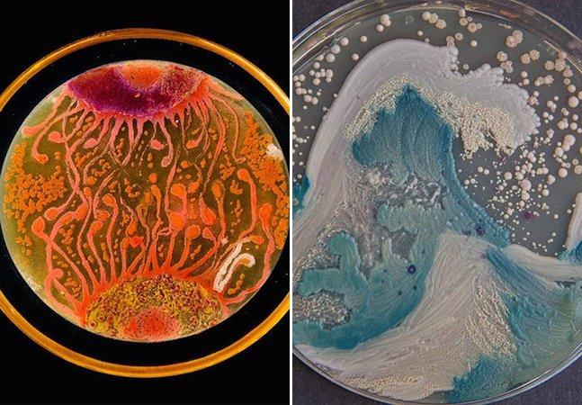 Cientistas inovam e usam material inusitado para criar obras de arte