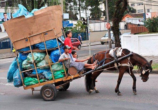 Israel é o primeiro país do mundo a proibir transporte de cargas em carroças puxadas por animais
