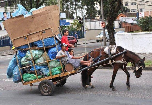 israel-cavalos5