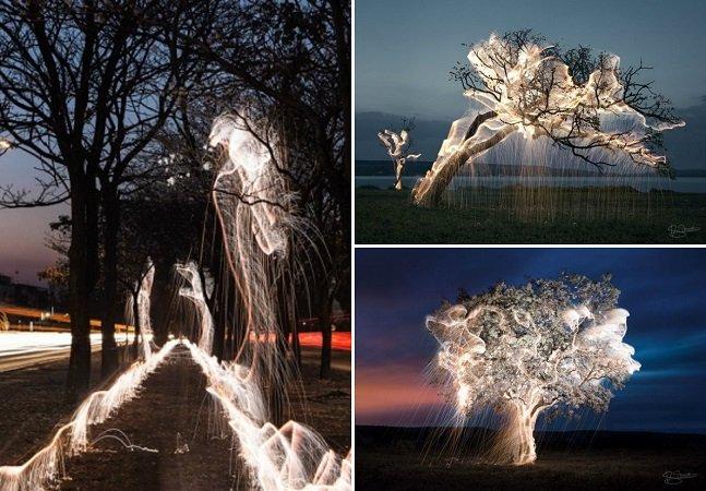 """Fotógrafo brasileiro usa técnica da longa exposição para clicar imagens de árvores que parecem """"pingar"""" luz"""