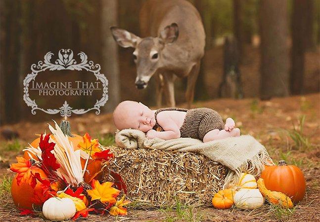 """O que acontece quando uma cerva filhote """"invade"""" o álbum de fotos de um recém-nascido"""