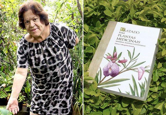 Livro digital gratuito reúne informações sobre quase 400 espécies de plantas medicinais