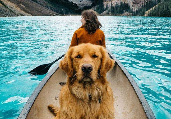 O adorável cachorro que está fazendo sucesso no Instagram com suas aventuras em paisagens incríveis