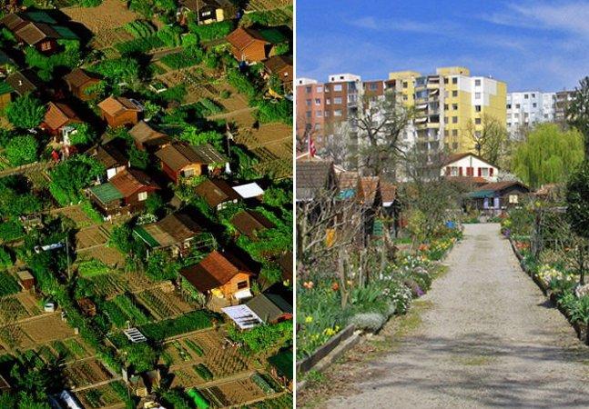 Conheça a cidade em que cada morador tem sua horta