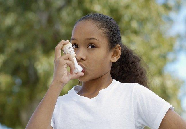 Pesquisadores descobrem como uma planta brasileira pode ser a cura para asma