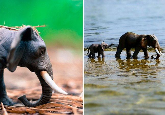 Designer alerta pra extinção de espécies criando cenários reais com animais de brinquedo
