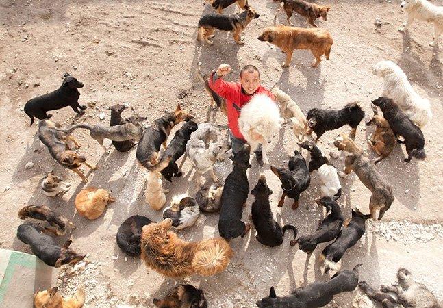 Como este homem está usando sua fortuna para salvar cachorros de um matadouro na China