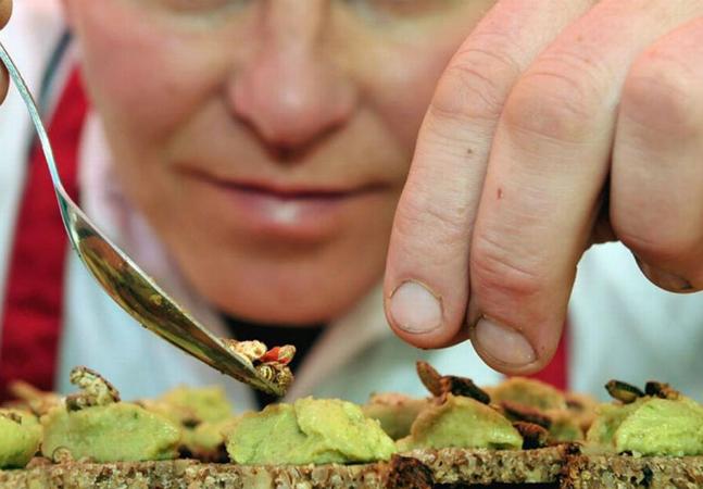 Conheça o restaurante que serve pratos à base de insetos para ajudar a salvar o planeta