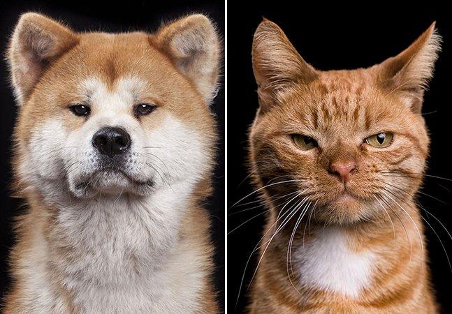 Fotógrafo lança livro com série de retratos íntimos e expressivos de animais domésticos