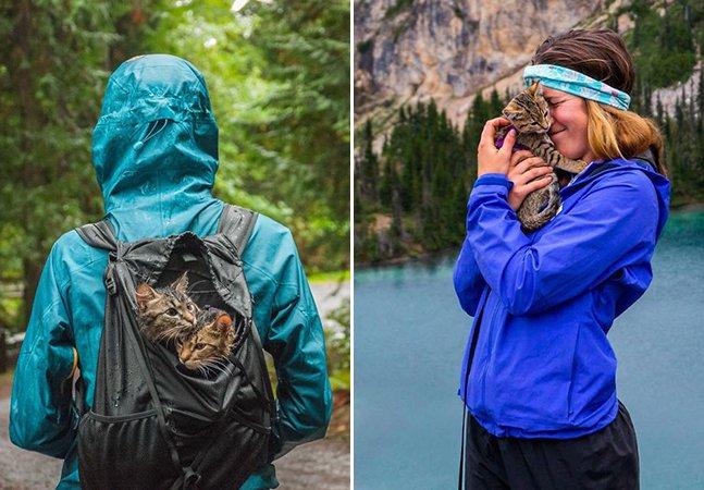 Amigos resgatam dois gatinhos abandonados e decide levá-los em aventuras pelo mundo