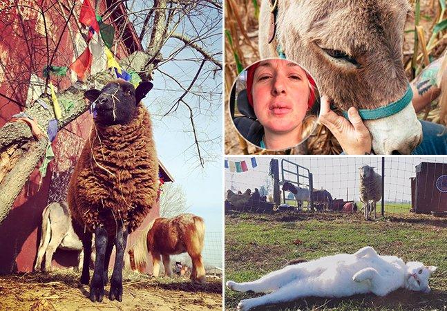 O incrível santuário que salva a vida de centenas de animais e foi criado por uma menina alérgica a todos eles