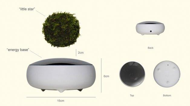 air-bonsai1
