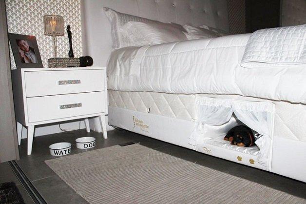 cama1