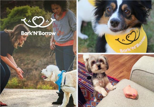App promove empréstimo de cães  para alegrar a vida das pessoas
