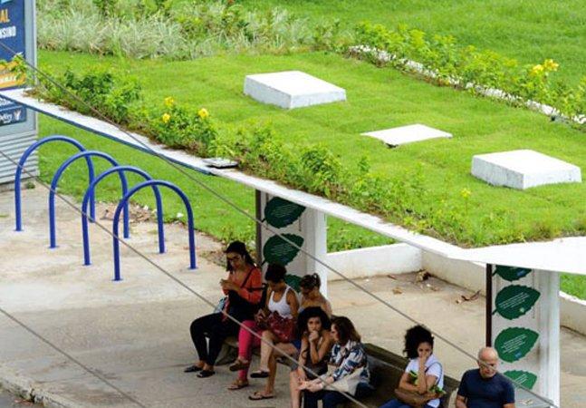 Salvador agora tem ponto  de ônibus com teto verde