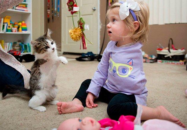 A emocionante amizade entre uma menina amputada e sua gatinha adotada de 3 patas