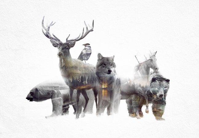 Série de GIF's de animais selvagens mostra como estamos destruindo seus habitats
