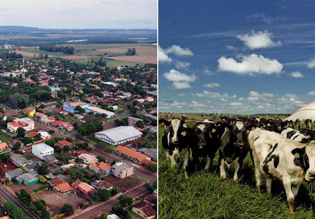 Cidade paranaense aprova projeto  para que 100% de sua energia  venha de fezes animais