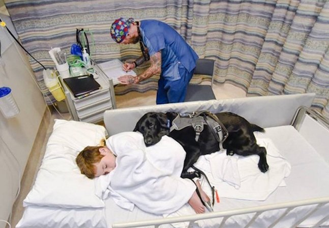 Cachorro fiel acompanha garoto autista de 9 anos ao hospital e deita do seu lado para o confortar